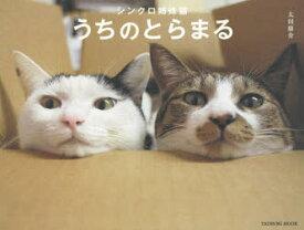 シンクロ姉妹猫うちのとらまる