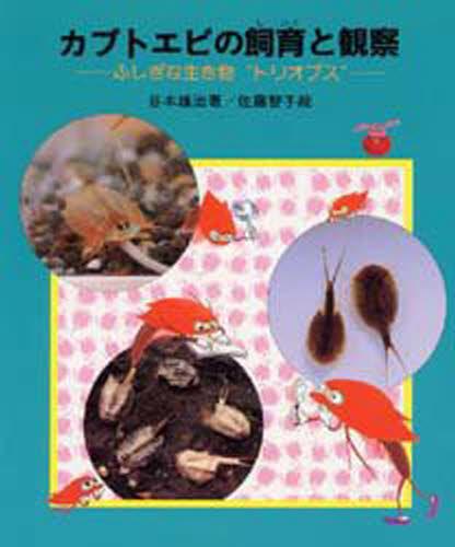 """カブトエビの飼育と観察 ふしぎな生き物""""トリオプス"""""""