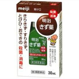 【第3類医薬品】イソジンきず薬 30ml