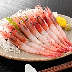 甘エビ(中サイズ)1kg 冷凍便 [ 海老 えび アマエビ ]