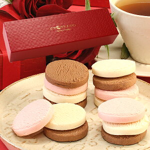 バレンタイン スイーツ ギフトとろける生チョコクッキー21枚入 赤BOXタイプ「バレンタイン スイーツ お菓子 洋菓子 ケーキ お配り 義理 本命」