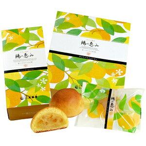 みかんまんじゅう陽の恵み 1個 【饅頭 まんじゅう 蜜柑 みかん 三ヶ日 和菓子】