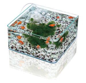 水作 グラスガーデンF300 水槽単体商品