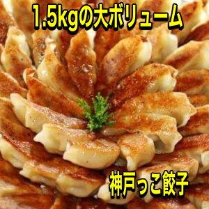 1.5kg入り!神戸っこ餃子と味噌だれセット【送料無料】餃子パーティーにギフトに最適です。元祖ぎょうざ苑・みそダレ・神戸餃子・サタデープラス・サタプラ