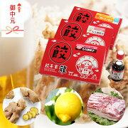 広島好きのお父さんへレモン・もち豚・しょうが餃子が入った人気者セット【餃子】【ぎょうざ】【ギョウザ】【国産】【冷凍】【レモン】【にんにく不使用】】