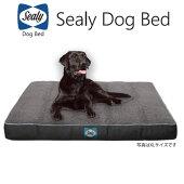 シーリーDogBedCushyComfyXLサイズドッグベッド犬用ベッドクシーコンフィーコレクションSealy