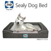 シーリーDogBedLuxpremiumSサイズドッグベッド犬用ベッドSealy
