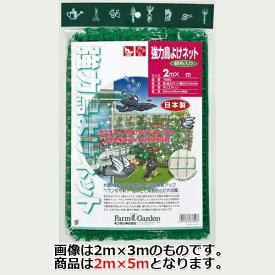 ■キンボシ 強力鳥よけネット(銀糸入り) 2×5m 鳥よけ 園芸 農業