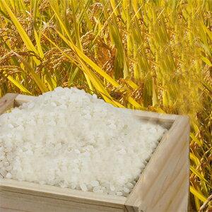 ■2020年 秋 収穫 新米 ひのひかり 30kg 兵庫県播州小野産 専用冷蔵庫にて冷却保管!