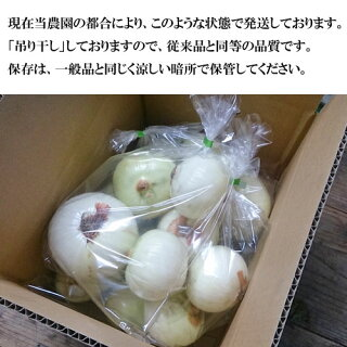 ■【数量限定】淡路島産完熟玉ねぎ5kg玉葱タマネギたまねぎ減農薬有機系肥料使用【RCP】