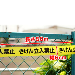 立入禁止テープ6cm幅50m巻のりなし立入禁止侵入禁止目張り非粘着建設現場建築現場作業場イベント会場敷地侵入標識テープ危険表示