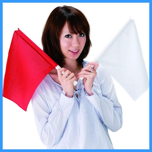 紅白旗上げゲーム  [イベント・対決・罰ゲーム・パーティーゲーム・パーティーグッズ]【B-0006_984131】