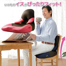 座椅子 コンパクト[勝野式 美姿勢習慣コンパクト]座った瞬間背筋がピン!椅子と背中のフィットが正しい姿勢に導きます。美しい姿勢 座椅子 骨盤 座椅子 腰痛 座椅子 骨盤矯正 椅子オフィス 猫背 クッション 座椅子【送料無料】