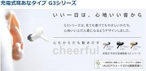 軽度〜高度難聴まで幅広く対応充電式ワイヤレスイヤホン耳穴型補聴器パナソニック/panasonic WH-G33 両耳セット