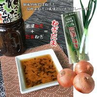 岩津ねぎたまぽん酢1