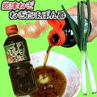 岩津ねぎぽん酢
