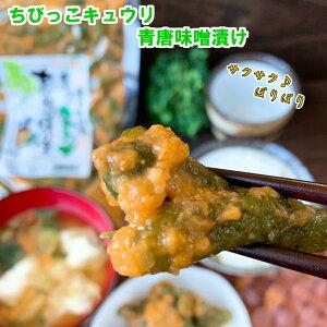 送料無料 ご飯のお供 岩津ねぎ入り 焼ねぎちびっこ味噌 330g×2 ネギ 味噌