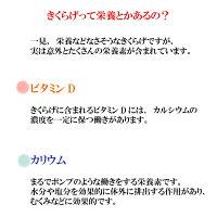 しその実きくらげ200g×2【送料無料】ポスト投函メール便紫蘇木耳ビタミンDご飯のお供酒の肴