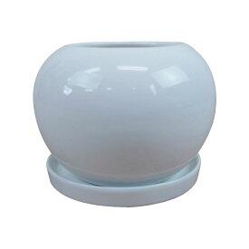 植木鉢 おしゃれ シンプルポット RR072-125 12.5cm 4号 / 陶器鉢 白 丸型