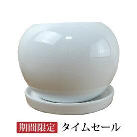 【タイムセール一部地域送料無料】植木鉢 おしゃれ シンプルポット RR072-125 12.5cm 4号 / 陶器鉢 白 丸型