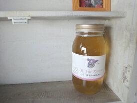 ハチミツみそにどうぞ!!スペイン産 ローズマリーはちみつ 1000g 蜂蜜サーバーが付いたお得なセットです