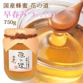 国産蜂蜜 花の道 早春みつ(さくら)750g