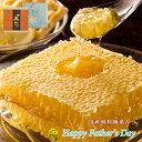 【送料無料】 父の日ギフト 国産純粋蜂蜜 極巣みつ 父の日 ギフト プレゼント 食べ物 健康