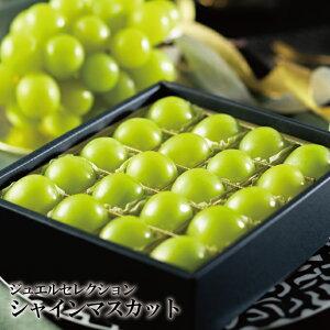 シャインマスカット ジュエルセレクション 岡山県産 特秀 5Lサイズ 20粒 葡萄 ぶどう ブドウ