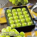シャインマスカット ジュエルセレクション 岡山県産 特秀 3Lサイズ 20粒 葡萄 ぶどう ブドウ