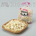 砂丘らっきょう 鳥取県産 JA鳥取いなば(福部産)秀品 Sサイズ 約2kg 洗い 送料無料