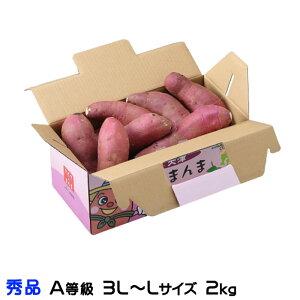 紅はるか べにはるか  熊本県 大津産 JA菊池 秀品 A等級  3L~Lサイズ 約2kg 送料無料  さつまいも 蜜芋
