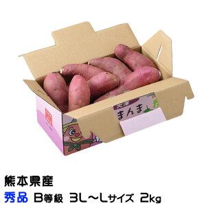 紅はるか べにはるか  熊本県 大津産 JA菊池 秀品 B等級  3L~Lサイズ 約2kg 送料無料  さつまいも 蜜芋