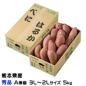 紅はるか べにはるか  熊本県 大津産 JA菊池 秀品 A等級  3L~2Lサイズ 約5kg 送料無料  さつまいも 蜜芋