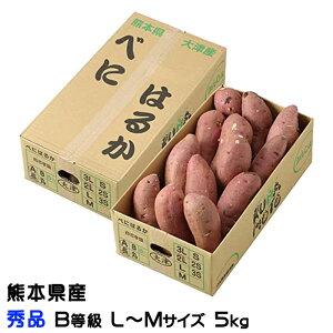 さつまいも 紅はるか 秀品 B等級 L〜Mサイズ 5kg 熊本県 大津産 JA菊池 べにはるか 蜜芋