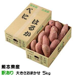 紅はるか べにはるか 熊本県 大津産 JA菊池 ちょっと訳あり  大きさおまかせ 約5kg 送料無料  さつまいも 蜜芋
