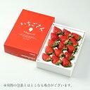 いちごさん 秀品 大粒 12粒〜18粒 500g 化粧箱入り 佐賀県産 JA佐賀 白石地区 苺 イチゴ