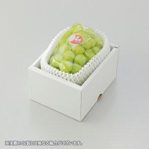 ぶどう 桃太郎ぶどう 赤秀 約700g×1房 岡山県産 香川県産 夏ギフト 葡萄 ブドウ