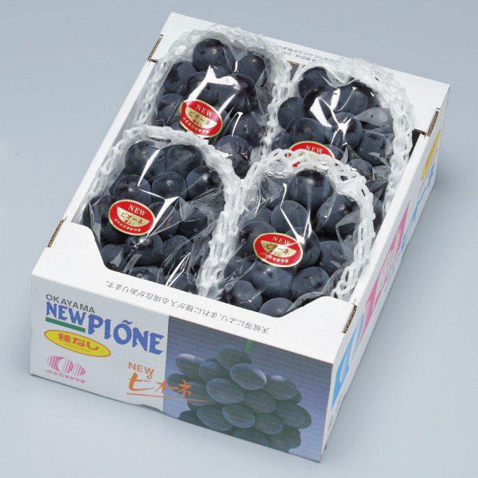 ニューピオーネ  岡山県産  風のいたずら ちょっと訳あり   3〜5房  約2kg 送料無料 ぶどう 葡萄 ブドウ