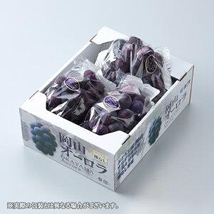 ぶどう オーロラブラック 赤秀 大粒 3〜5房 約2kg 岡山県産 JAおかやま 葡萄 ブドウ