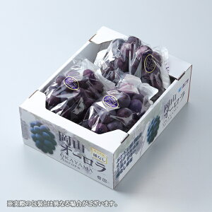 オーロラブラック 岡山県産  風のいたずら ちょっと訳あり 3〜5房  約2kg  送料無料 葡萄 ぶどう ブドウ