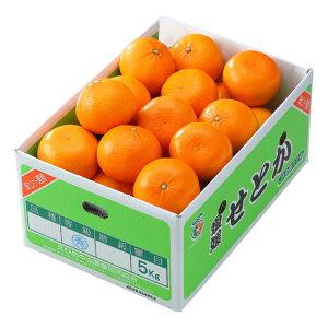 みかん せとか 風のいたずら 訳あり 大きさおまかせ 5kg 愛媛県 中島産 ミカン 蜜柑 ギフト 贈り物