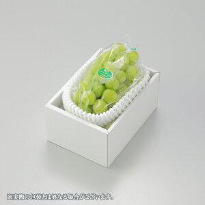 ぶどう 瀬戸ジャイアンツ 赤秀 約900g×1房 岡山県産 JAおかやま 葡萄 ブドウ