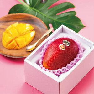 マンゴー 太陽のタマゴ 赤秀 2L 350g以上 1玉 JA宮崎経済連 宮崎県産 完熟マンゴー 太陽のたまご ギフト お取り寄せグルメ