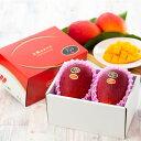 太陽のタマゴ 完熟マンゴー 太陽のたまご 宮崎県産  赤秀 2L 350g以上×2玉   ギフト 送料無料