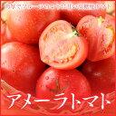 高糖度フルーツトマト 『アメーラ』  秀品 L〜2Sサイズ (約1.0kg) 化粧箱入り (静岡県産・長野県産)  贈り物・ギフト  【送料無料】
