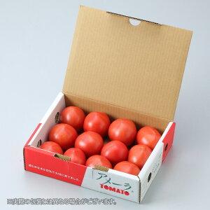 トマト アメーラ 高糖度フルーツトマト 秀品L〜2Sサイズ 1kg 静岡県産 長野県産 ギフト お中元 夏ギフト