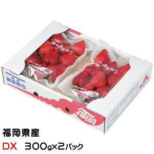 いちご あまおう デラックス DX 大粒 7〜11粒 300g×2パック 福岡県産 苺 イチゴ #元気いただきますプロジェクト
