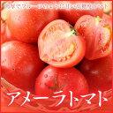 完熟 高糖度フルーツトマト 『アメーラ』  大きさおまかせ  (約1.0kg) 化粧箱入り (静岡県産・長野県産)
