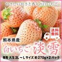 【送料無料】熊本県産 白いちご 『淡雪』(あわゆき) 青秀 3L〜Lサイズ(約270g×2パック)