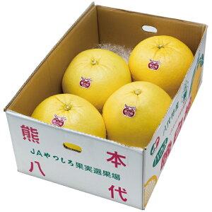 みかん 晩白柚 ばんぺいゆ 秀品 Lサイズ 6玉 10kg 熊本県産 JAやつしろ ミカン 蜜柑